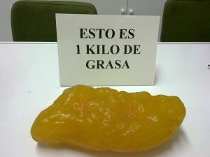 """Maqueta de un kilo de grasa"""