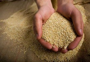 620-10-health-benefits-of-quinoa-10-esp.imgcache.rev1363365807769.web