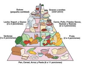 piramide alimenticia antigua