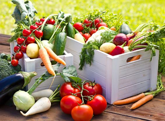primavera y nutricion