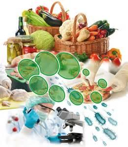 faba.org.ar microbiota y alimentos