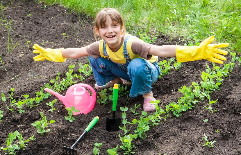 como-crear-un-huerto-escolar